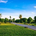 Giải Chạy Ecopark Marathon – Cung đường chạy đẹp nhất miền Bắc
