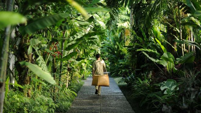 Thiên đường nghỉ dưỡng tựa Bali giữa lòng Ecopark - 1